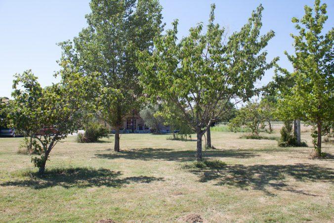 gite serena jardin olivier